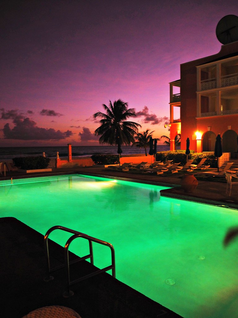 The Little Magpie Southern Palms Barbados Review 36 (2)