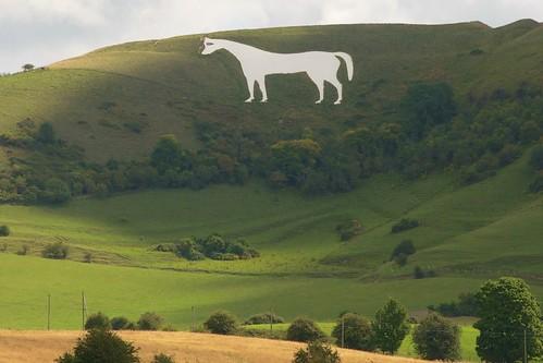 Westbury White Horse. Credit Jon Connell