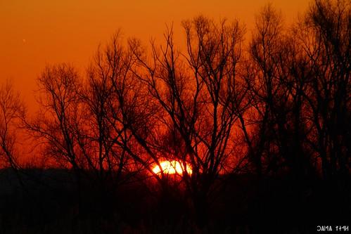 sunset colors sunrise canon eos hungary magyarország színek 100d maglód