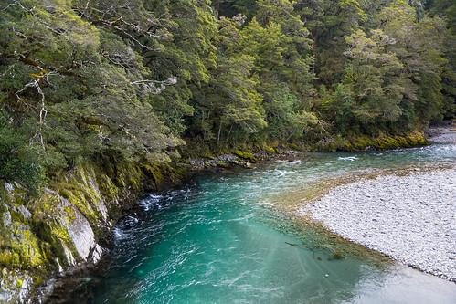 newzealand sunlight forest river moss bush rocks shade nz southisland riverbend mtaspiringnationalpark bluepools beechforest makarorariver haastrd