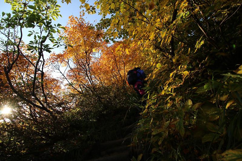 2014-09-28_00176_栗駒山.jpg