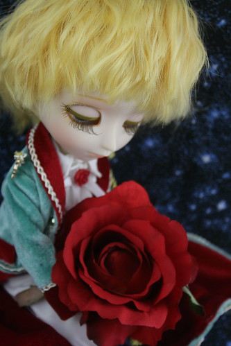 My precious rose
