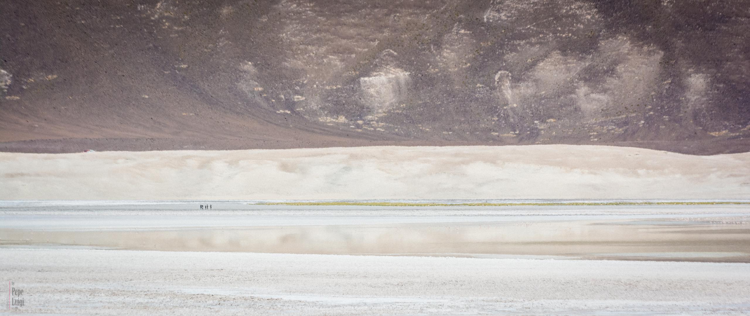 Salar Las Parinas   Atacama