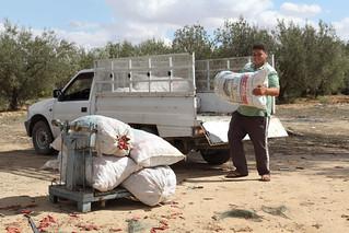 Commercialisation des piments séchés (BY-ND-....)