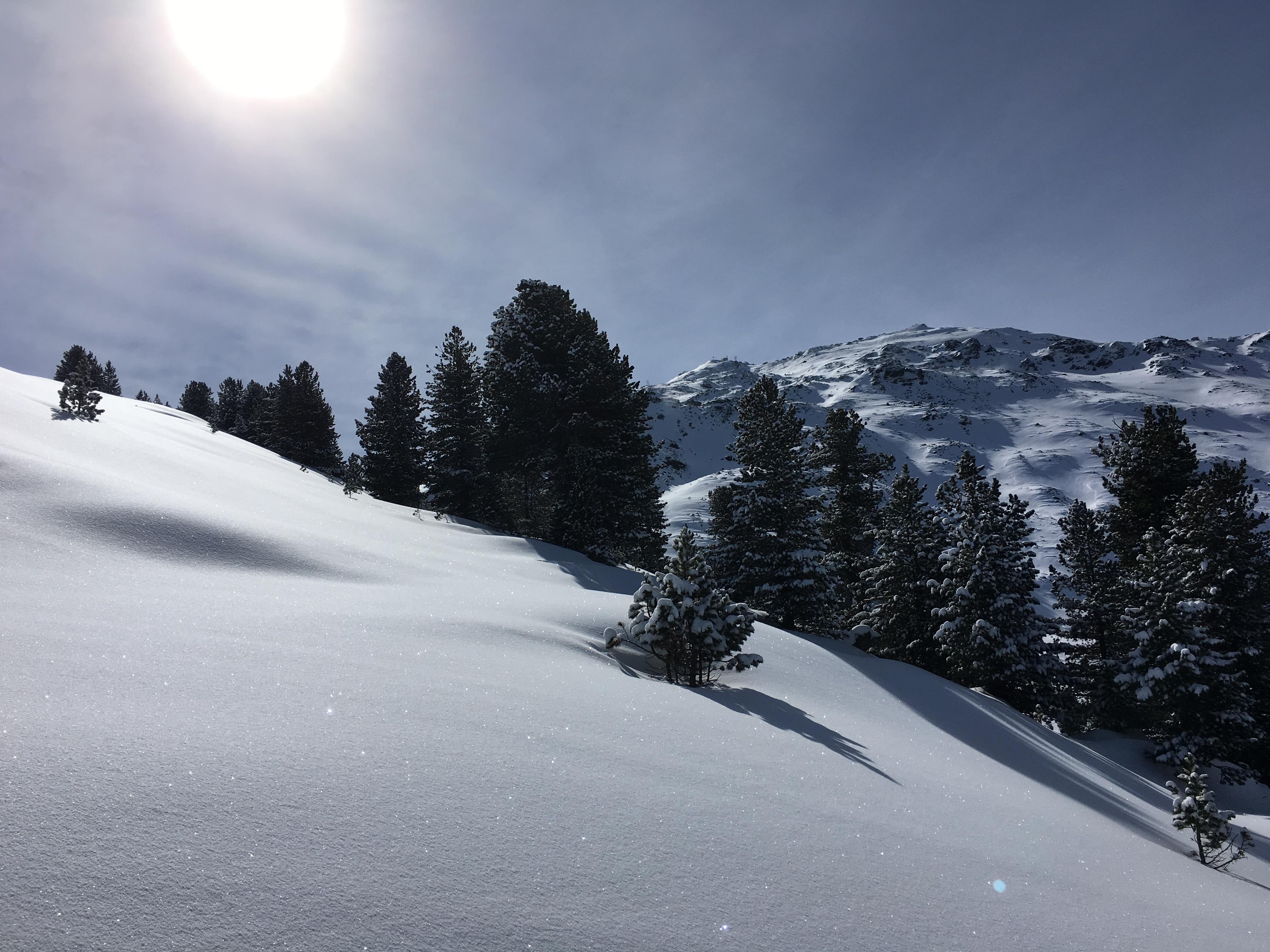 Schartenkogel (2.310m), Tuxer Alpen, 4.3.2016