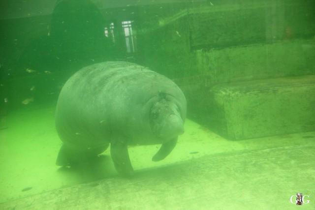 Wasserspaß für Tonja+Wolodja Tierpark 06.03.201649