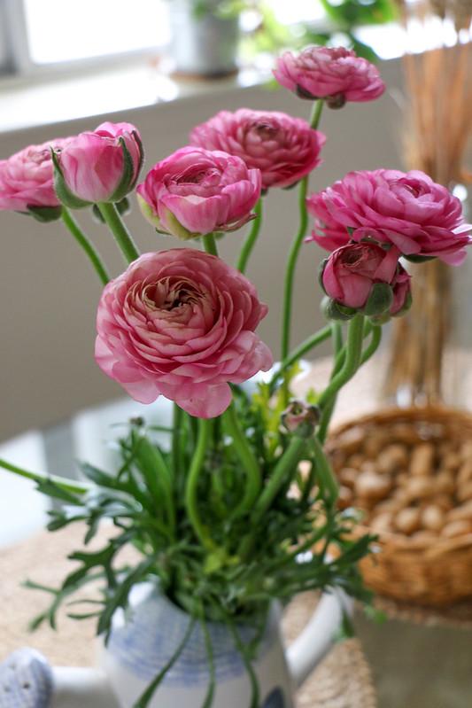 03.12. Ranunculus