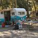 Yellowstone IMG_6073