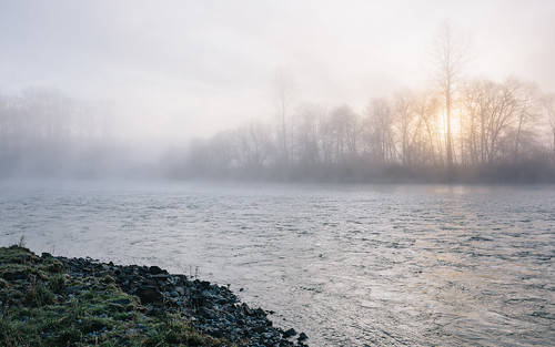 sun nature water fog sunrise river washington foggy pacificnorthwest snoqualmieriver canoneos5dmarkiii chinookbendnaturalarea sigma35mmf14dghsmart