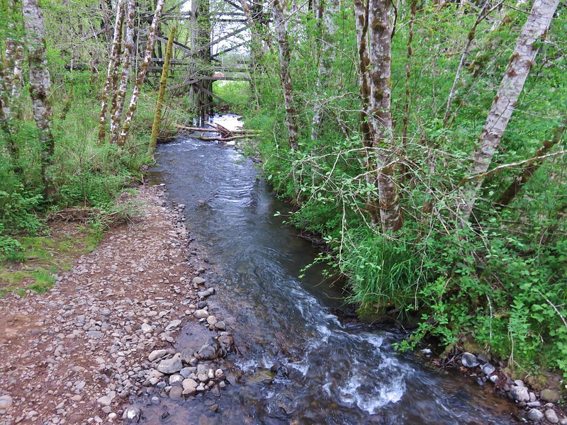 Mendenhall Creek