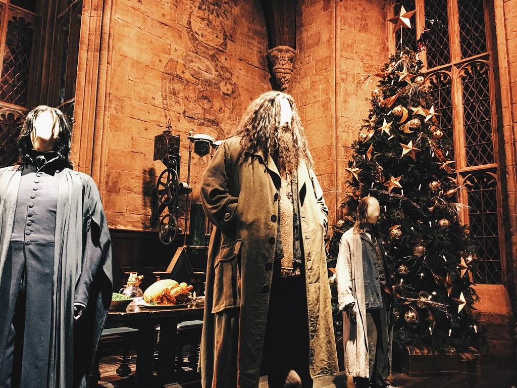 Harry_Potter_ott_06