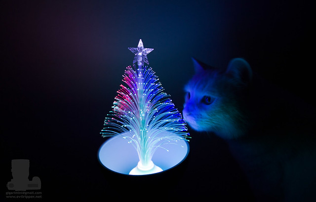 Fiber optic tree with intruder
