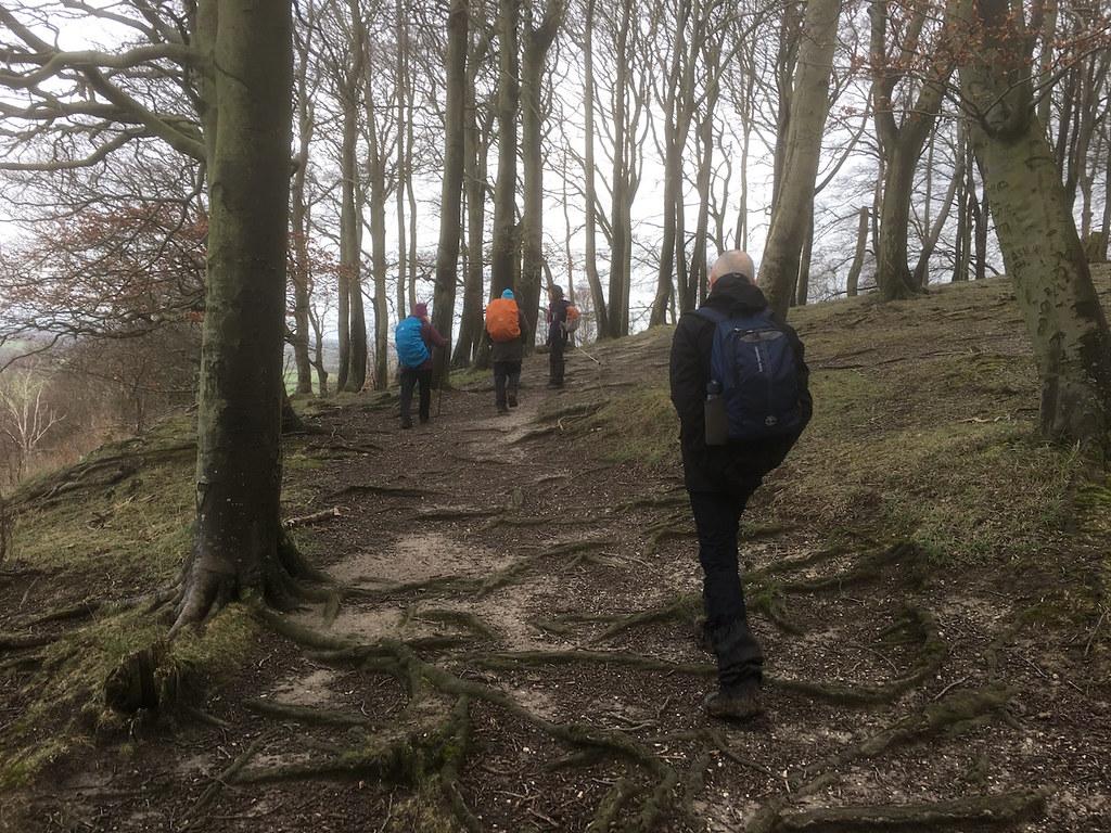 Sharpenhoe Hill Fort Harlington Circular walk