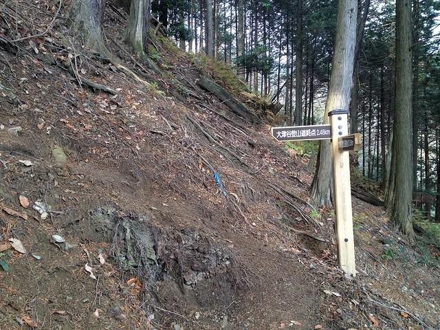 池田山 大津谷登山道 終点まで2.48km