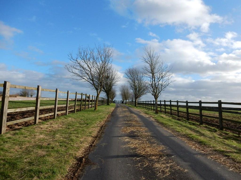 Leaving Must Hill Stud Farm Haddenham Circular (short)