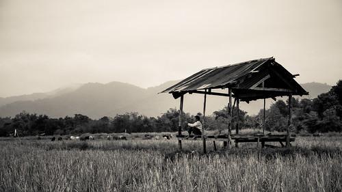 la southeastasia laos vangvieng vientiane