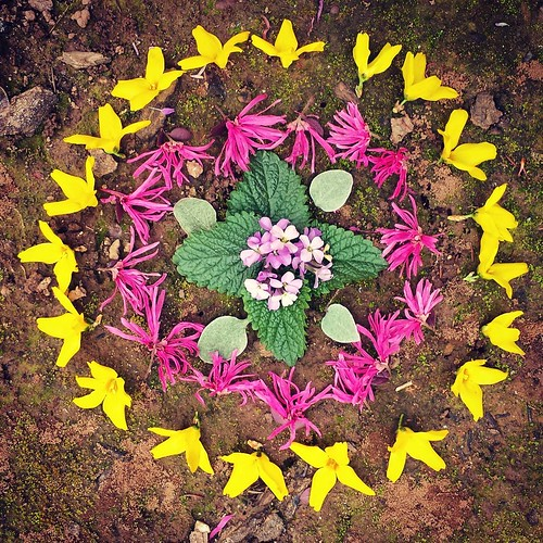 Good morning! Garden Mandala No. 2