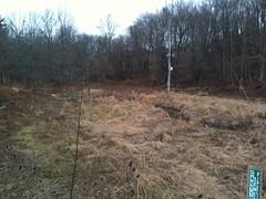 Valley Park Pond Pre-Retrofit (4)