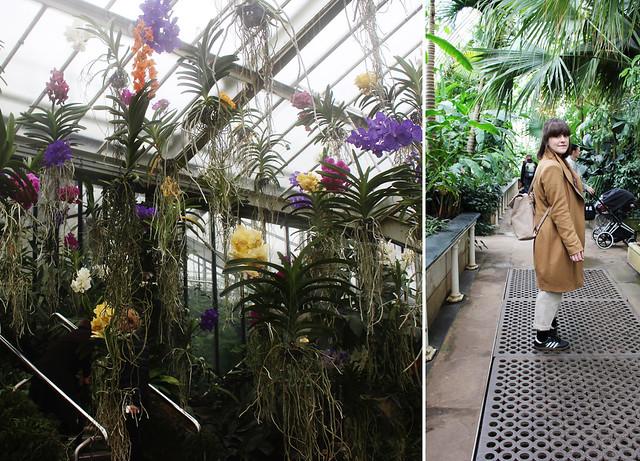 Kew Gardens9