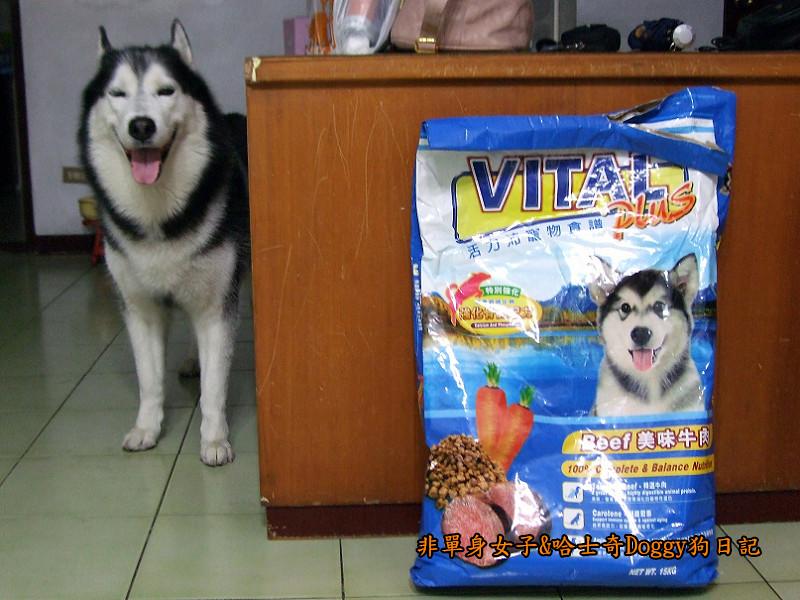 哈士奇Doggy愛狗零食27