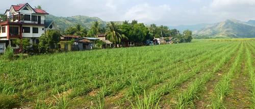 P16-Negros-San Carlos-Dumaguete-Route (12)