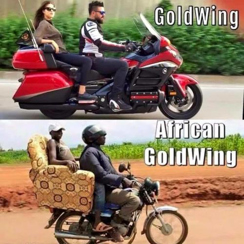 Imagen graciosa de moto Goldwing