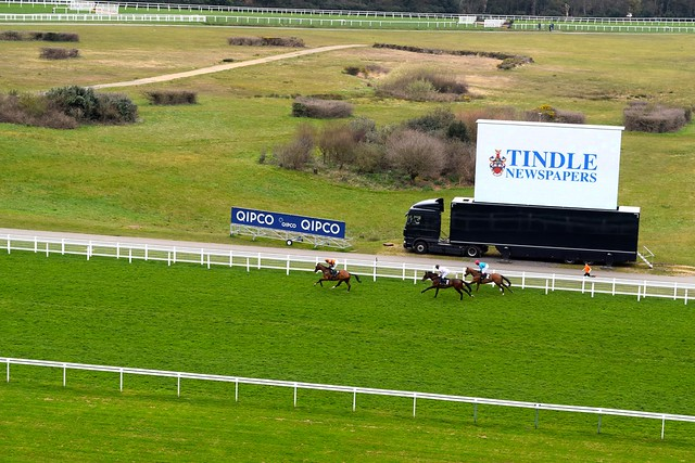 Prince's Countryside Fund Raceday, Ascot | www.rachelphipps.com @rachelphipps