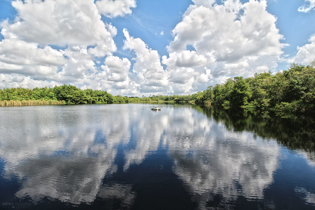 Gator Lake, Six Mile Cypress Slough Preserve - Florida