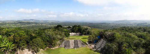 Xunantunich: vue sur la canopée et le site depuis le Castillo