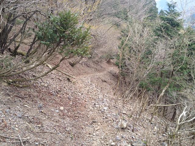 御池岳 鞍掛峠 登山道
