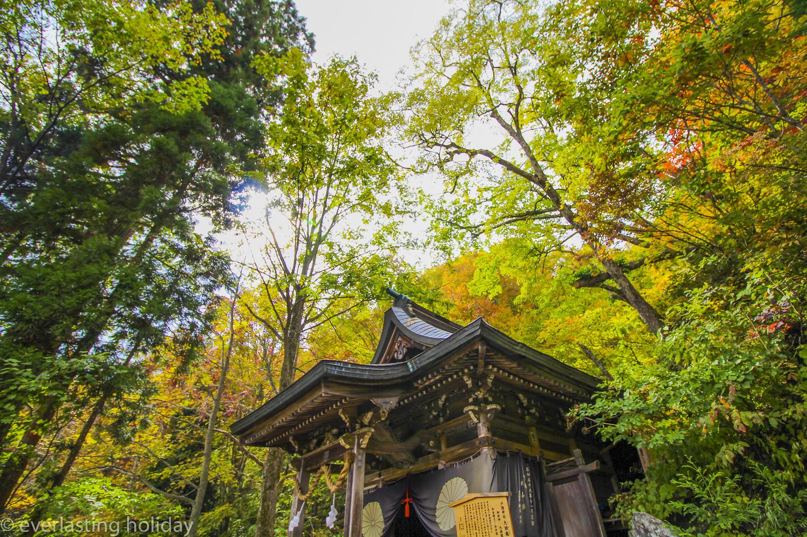 戸隠神社 Togakushi-jinja Shrine-0013