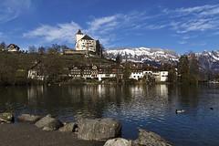 See-, Städtli-, Schloss Werdenberg