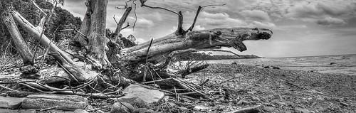 sky blackandwhite ontario canada beach water monochrome clouds landscape coast nikon waves stones debris shoreline greatlakes shore lakehuron d300 photomatix driftwod camphermosa
