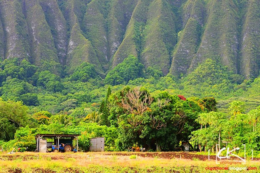 Hawaii_0232