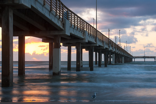 sea usa beach gulfofmexico sunrise pier fishing texas seagull earlymorning portaransas keepers horacecaldwellpier