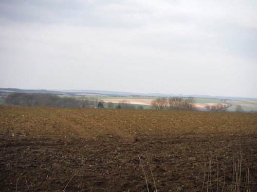 View into the Cambridgeshire plain from Freewood Lane