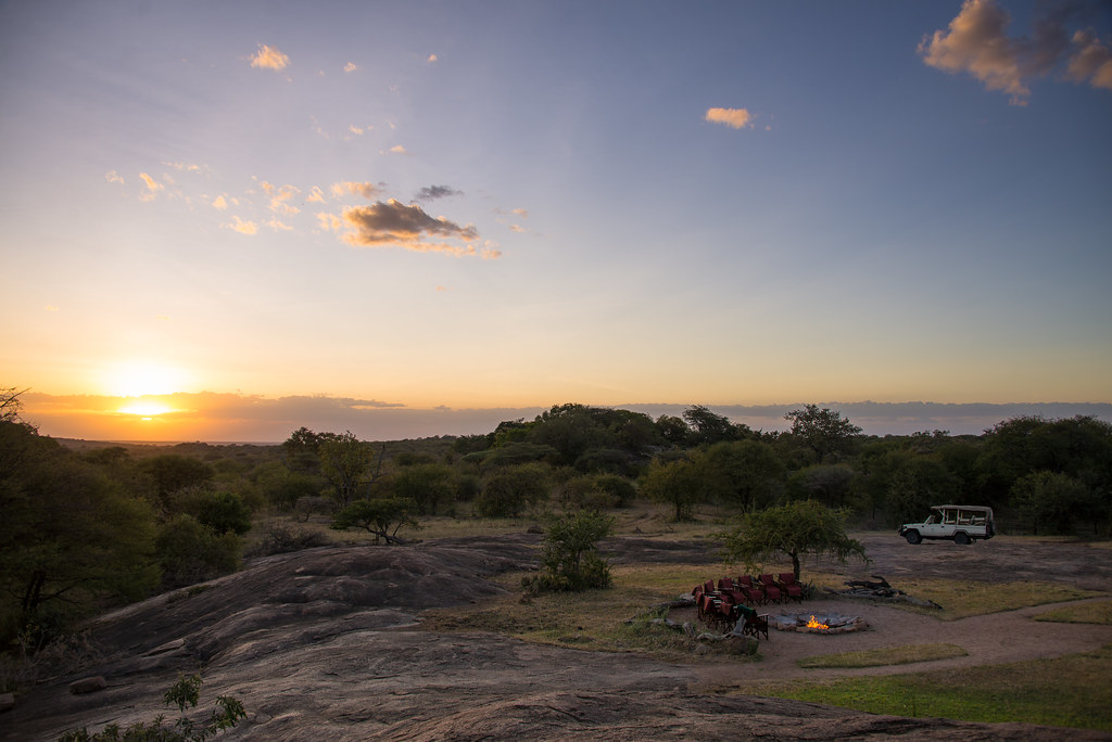 Inspired To Join A Safari of a Lifetime With Abercrombie & Kent