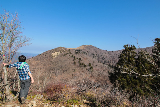 20141122-武奈ヶ岳&京都ライトアップ-0154.jpg