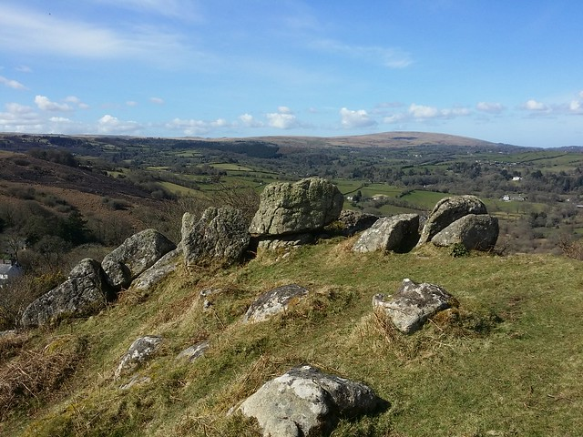 Outcrop, Nattadon Common