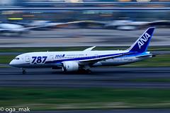 LR-2735.jpg