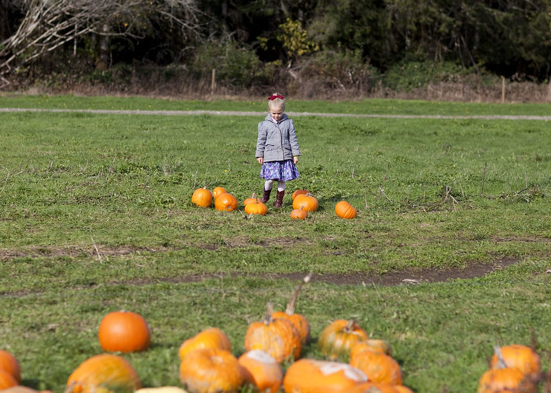 PumpkinPatch2015_22