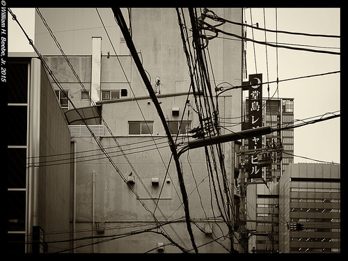 city sinews