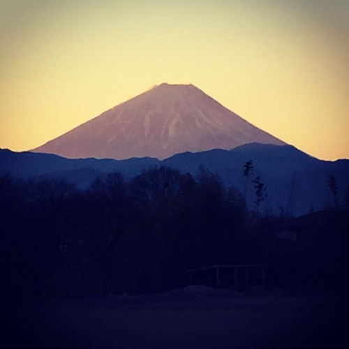 富士山がきれい!