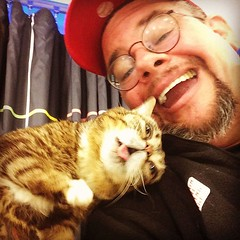 #caturday with #catsofinstagram @iamlilbub