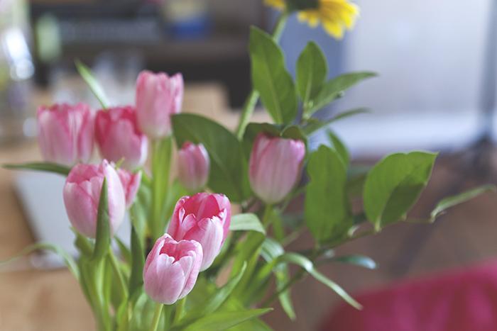 pinke Tulpen Strauß