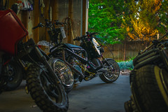 Ruckus/Grom Garage