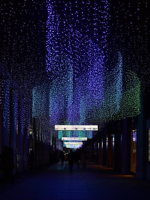 光のオーロラ_光の街・博多