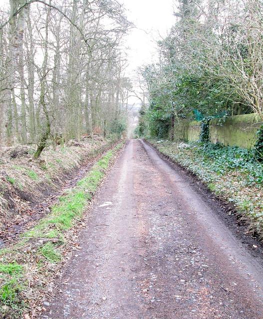 Waterless Road