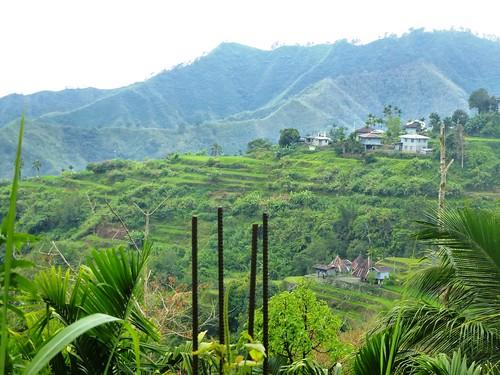 P16-Luzon-Mayoyao-Terrasses (17)