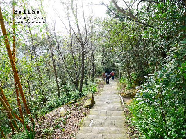 台北內湖一日遊景點推薦 (2)
